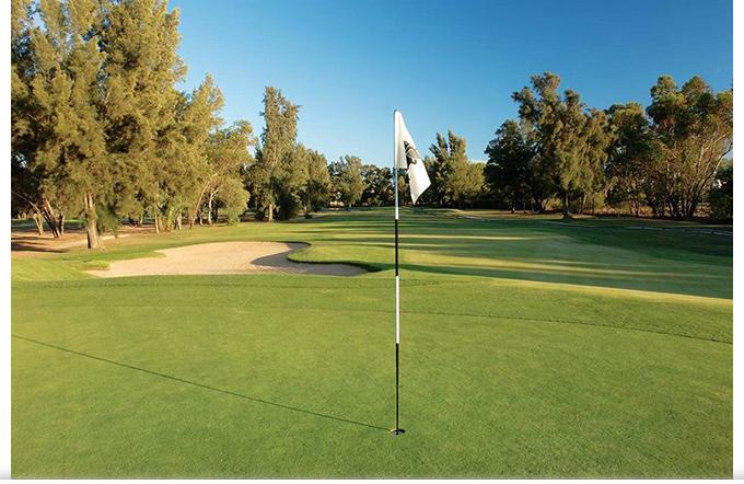18 holes Penina Golf Course